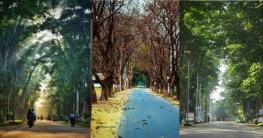 দেশের সবচেয়ে 'মায়াবী রাস্তা' প্যারিস রোড