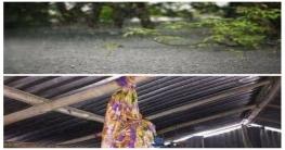নতুন পোশাক-মেহেদি না পেয়ে ফাঁস দিল স্কুলছাত্রী