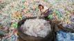প্লাস্টিক থেকে ভ্যানিলা: দূষণ কমানোর পথ দেখালেন বিজ্ঞানীরা
