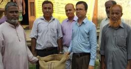 নোয়াখালী সদরে মণপ্রতি ১০৪০ টাকা দরে ধান কেনা শুরু