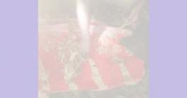 মাটি খুঁড়ে মানবদেহের কঙ্কালের সন্ধান দিল পাখি