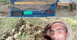 ট্রাক চালককে জিম্মি করে খামারির ৩০০ হাঁস ছিনতাই