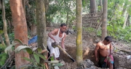 কোম্পানীগঞ্জে ৪ মাস পর চার মরদেহ যাচ্ছে মর্গে