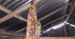 কোম্পানীগঞ্জে মায়ের ওপর অভিমান করে কলেজছাত্রের আত্মহত্যা