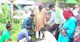 বেগমগঞ্জে বৃক্ষ রোপণ কর্মসূচীর উদ্বোধন