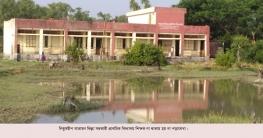 হাতিয়ায় শিক্ষকবিহীন সরকারি প্রাথমিক বিদ্যালয় ছাগলের দখলে