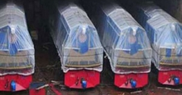 রেলওয়েতে ১০টি ব্রডগেজ ইঞ্জিন উপহার দিল ভারত