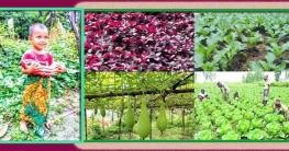 খাদ্য সংকট মোকাবেলায় সুবর্ণচরের বাড়ির আঙ্গিনায় সবজি চাষ